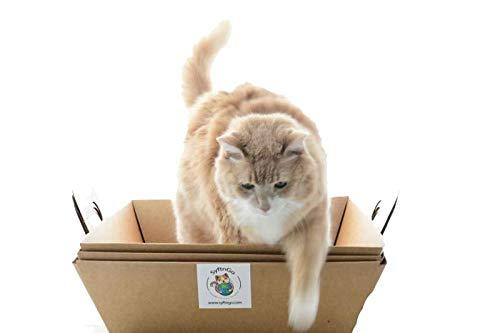 SyftnGo Einweg Sifting Katzentoiletten-System