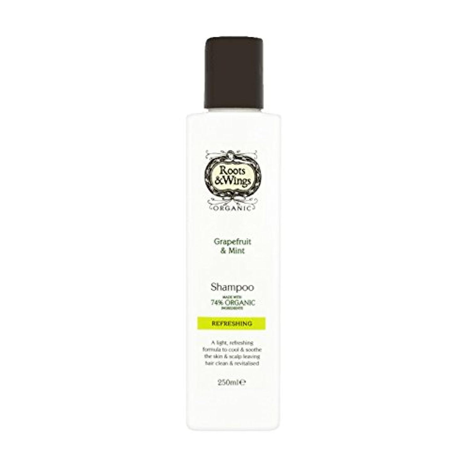 混乱従事した発信Roots & Wings Shampoo Grapefruit & Mint 250ml (Pack of 6) - ルーツ&翼シャンプーグレープフルーツ&ミント250ミリリットル (x6) [並行輸入品]