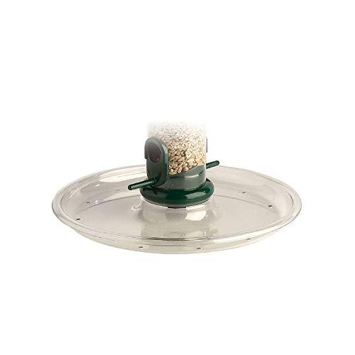 Jacobi Jayne RPT-1 Ring-Pull Tray, Clear