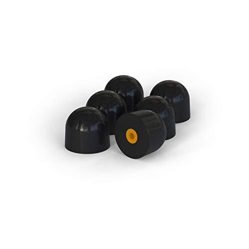 Flare Audio - Punti di ricambio per la protezione delle orecchie certificata Isolate 2 (Medium)