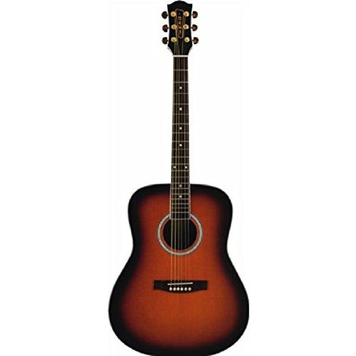 Eko Ranger 6 Brown SBT chitarra acustica folk classica entry level tavola abete