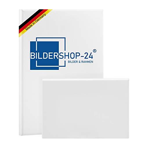 Bildershop-24 Bespannter Keilrahmen (unbedruckt), 100x200cm, 250g/m² (100{8b4e474993baf0c10e28c07c28c979326f5dad83ed096b7b3b60169e5b83166d} PES), 22 mm (Premium)