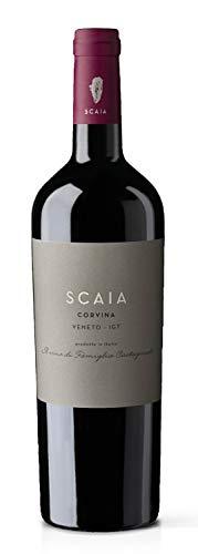 SCAIA Corvina Rossa, Veneto IGT, Tenuta S. Antonio, Italien, Jahrgang 2017