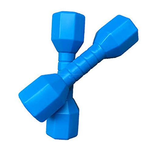 YDL 2 Unids/Set Fun PE PE Bailares Props Educación Early Ejercicio Home Pesos Mano Pesos Fitness Equipo De Fitness Niños Mancuernas Gimnasio Deportes Al Aire Libre (Color : Blue)