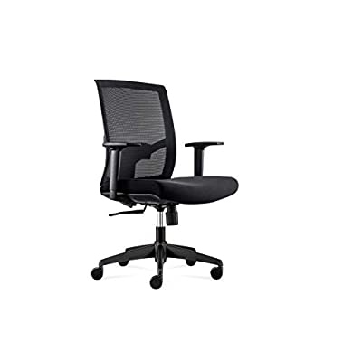 ALFA Furnishing Office Desk Chair, Ergonomic Ch...