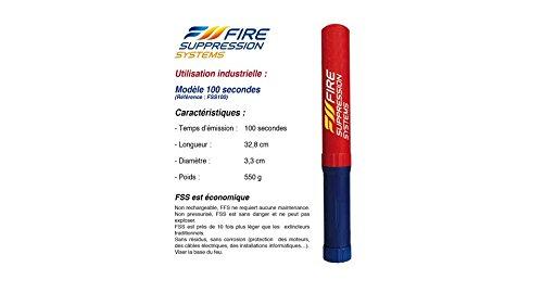 FIRE SUPPRESSION SYSTEMS 100 SECONDI RINA