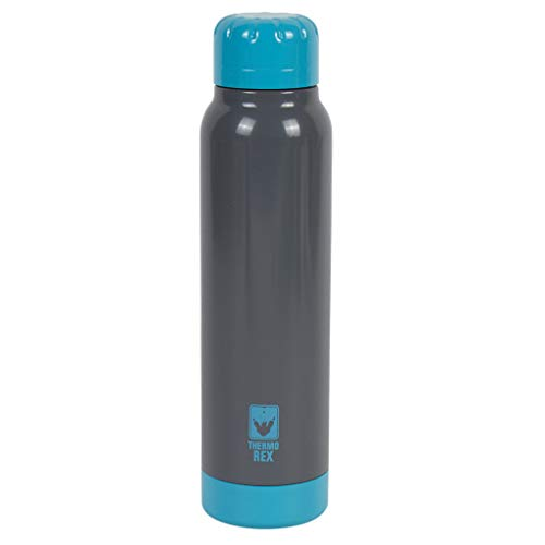Thermo Rex Peak thermosfles - 250 ml - zwart/turquoise - met deksel - houdt tot 18 uur warm of koud - van roestvrij staal - vrijwel onbreekbaar en herbruikbaar - geen lekken - drinkfles
