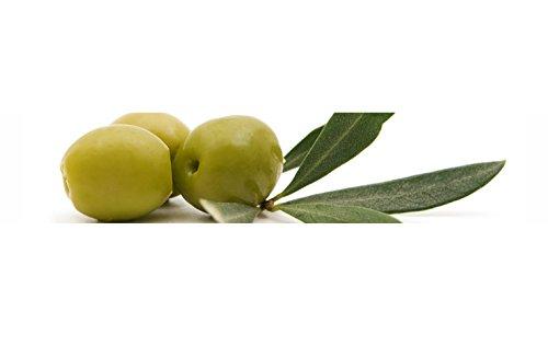 Küchenrückwand-Folie Olive Klebefolie Spritzschutz Küche Fliesenspiegel Möbel Rückwand selbstklebend   mehrere Größen   DIY