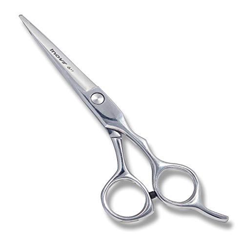 Ciseaux coiffeur professionnels pour salon coiffure –Ciseaux coiffeur-Ciseaux professionnels pointus, 6,0– Idéal pour un usage personnel également utile pour les animaux domestiques, chiens et chats
