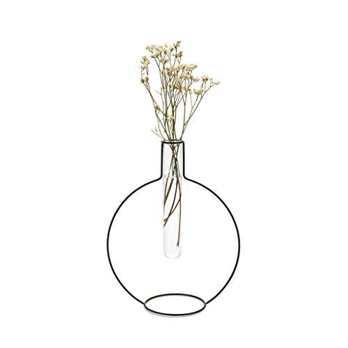 balvi Blumenvase Round Silhouette XL Farbe Schwarz Dekorative Vase aus Glas und Metall Originelle Blumenvase in Form eines Reagenzglases aus Glas/Metall 27 cm