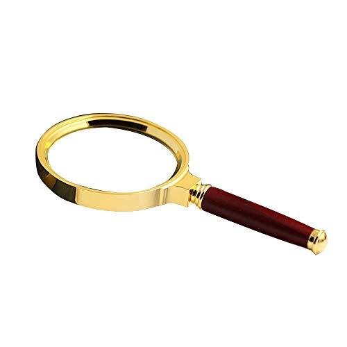 HJXSXHZ366 vergrootglas voor landbouw, draagbaar, 10-voudig vergrootglas, metalen handgreep, leescertificering, spiegel, vergroting