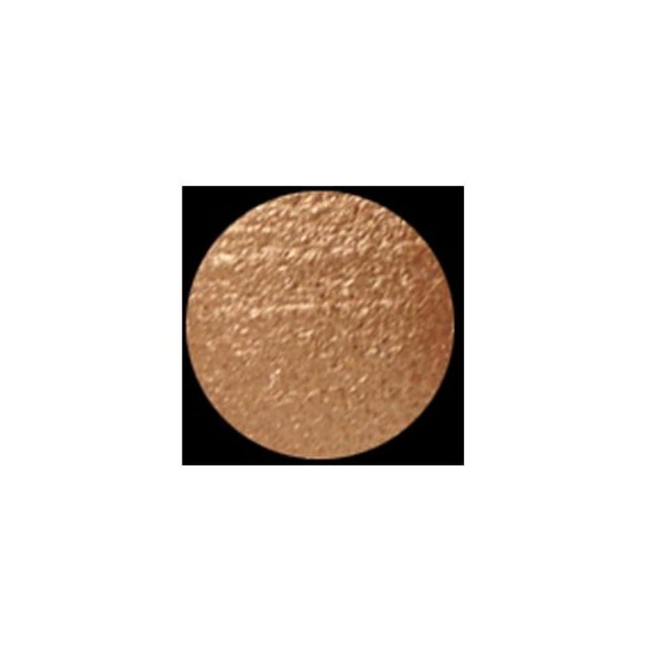 故意の劣る鉄KLEANCOLOR American Eyedol (Wet/Dry Baked Eyeshadow) - Glitter Copper (並行輸入品)