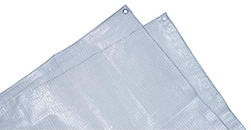 Tec Hit 884406Lona transparente con armado, muy pesada, 230g/m², 4x 6m