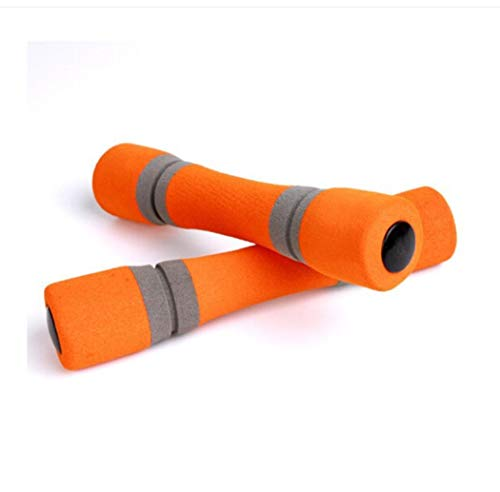 Ganvol 2 x 0.5 kg Non-Slip Dumbbells with Soft Grip for Yoga/Pilates/Home Rehabilitation/Fitness Training, Compact And Easy to Store, Non-Toxic And Tasteless