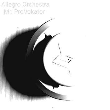 Allegro Orchestra