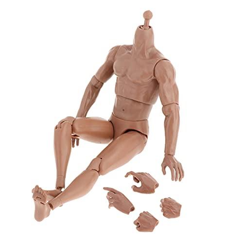 F Fityle 1/6 Escala Súper Flexible Hombre Desnudo Cuerpo Piel de Trigo Pose-Capaz 29cm Altura Muñeca