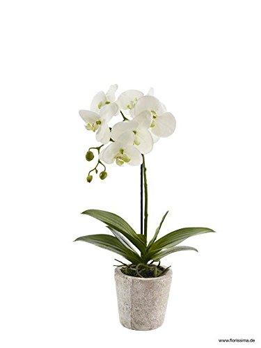 Künstliche Orchidee im Topf - Dekoration Kunstorchidee - Weiße Blüten & Grüne Knospen - Naturgetreue & Hochwertige Phalaenopsis/Dekoorchidee - Höhe: 50cm - Topfpflanze/Dekopflanze