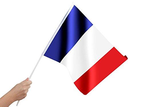 Alsino Drapeau Français 30x45 cm de qualité supérieure 100% Polyester 00/0822 monté sur Une hampe en Plastique, à agiter à la Main Supporter France Bleu Blanc Rouge Accessoire Homme Femme Fille