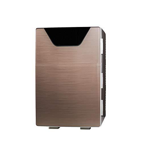 NYGJMNBX dubbele deur, draagbare mini compacte frigo, persoonlijke cools & heats, 100% freon-vrij en milieuvriendelijk, inclusief stekker voor stopcontact en autolader, 12 V
