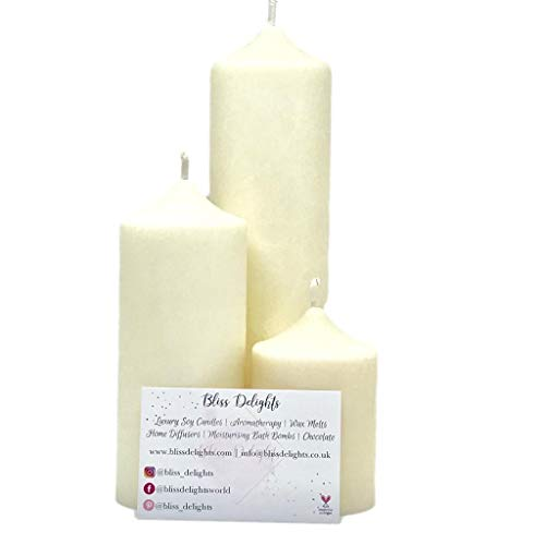 Bliss Delights Unscented Soy Pillar Candles | Plastic Free, Eco-Friendly, Cruelty Free & Vegan Soy Wax Candles (Large)
