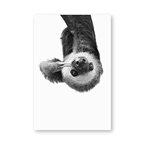Dass Leinwand Kunst Gemälde Faultier Tier Modern Schwarz-Weiß-Poster HD-Druck Wandkunst Bild, für Kinderzimmer Dekoration Kein Rahmen (Size : 40X60cm Unframed)