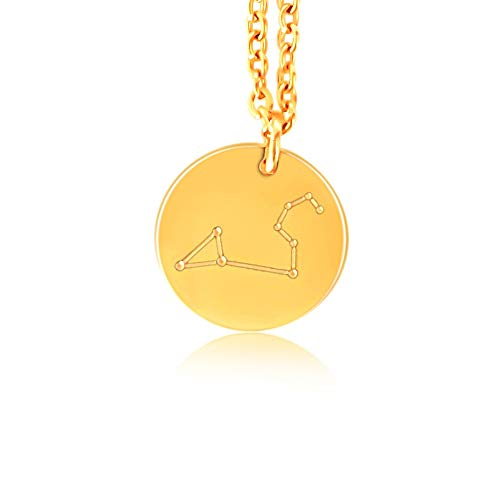 Rykke Olsen Sternzeichen Kette Löwe| Münz-Anhänger mit Sternzeichen Graviert - Hochglanz Anfertigung (316L Goldbeschichteter Edelstahl)