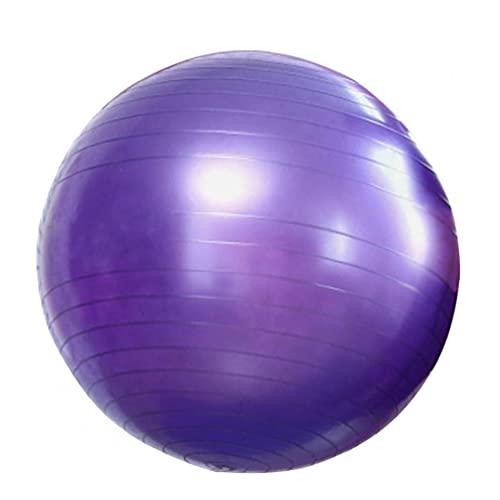 Liadance Yoga Bola del Ejercicio De La Bola Aptitud del Ejercicio De Estabilidad Anti-explosión De La Bola para Parto Yoga Pilates Fitness Embarazo Púrpura Trabajo 65cm