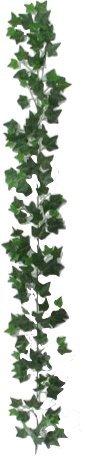 Edera Ivy - Ghirlanda Artificiale Cadente Da Arredo Esterno - Resistente ai Raggi U.V. Certificato TUV - 144 foglie - Lunga 180 cm