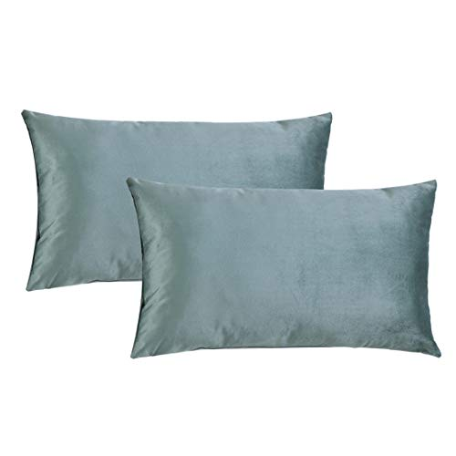 HPUK Pack of 2 Velvet Throw Pillow Cover Cozy Solid Pillowcase Decorative Cushion Cover for Couch Sofa Bedroom Office car, 12x20, Duck Egg