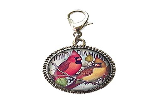 Moda rojo pájaro cristal arte foto encanto pulsera colgante cremallera tire encanto con cierre langosta cremallera tire joyería