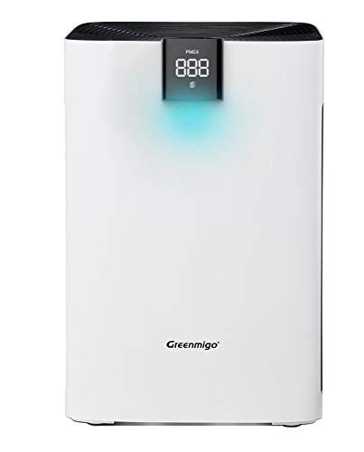 Greenmigo Purificador de Aire 3 en 1 con pre-Filtro,Filtro HEPA,Filtro de Carbón Activado,CADR 320m3/h,para 99{77c01c7edd336ffb534c00e59b19c4ccc07ef14a8ad52428fc1bd0c97f4d7022} Polvo,Olor,Pelos Animales,Humo,Alérgenos en Aire,Función de Temporizador(Alpha AP300)