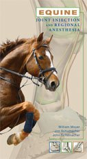 Compare Textbook Prices for Equine Joint Injection and Regional Anesthesia  ISBN 9780615420332 by William Moyer
