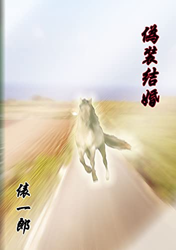 Couverture du livre gisoukekukon (Japanese Edition)