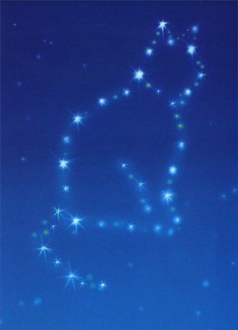 Cat Constellation Pet Sympathy Card