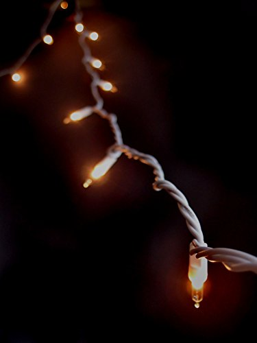 Fantado 10 Indoor Mini String Lights, 8.35 FT White Cord by PaperLanternStore