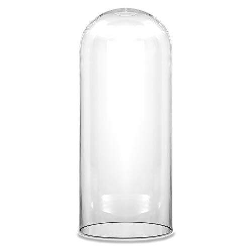 CYS EXCEL Dome Glass Cloche (H:14' D:6') | Multiple Size Choices Decorative Showcase Display for Antique Collectibles | Bell Jar Terrarium & Dessert Cover