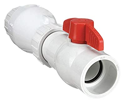 Dual-check Valve, PVC, , 2 In from Zoeller