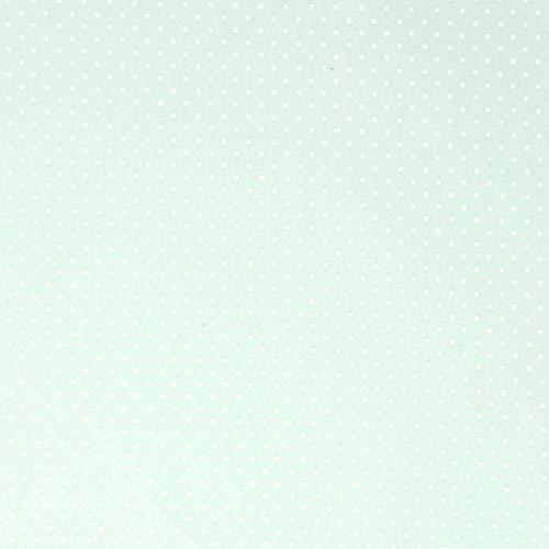 Sugarapple Stoff Meterware Baumwolle beschichtet |wasserabweisend | weich| matt |Wachstuch |Qualität zum Nähen |Punkte klein Mint