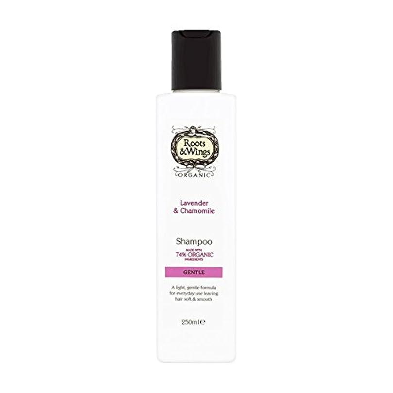 識字裂け目気づかないRoots & Wings Shampoo Lavender & Chamomile 250ml (Pack of 6) - ルーツ&翼シャンプーラベンダー&カモミール250ミリリットル (x6) [並行輸入品]