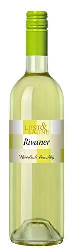 Württemberger Wein Großbottwarer Rivaner QW LUST & LAUNE halbtrocken (1 x 0.75 l)