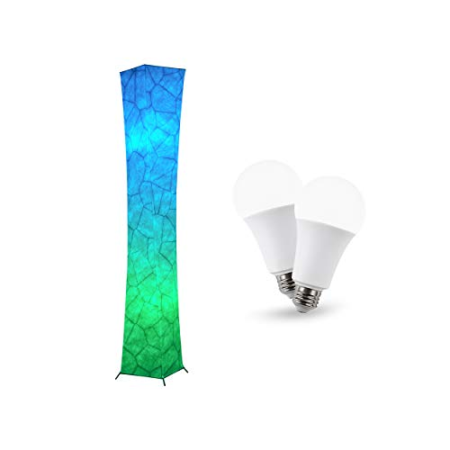 61'' RGB Floor lamp and 9W Rechargable Emergency LED Bulb