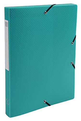 Exacompta 59603E Archivbox (Rücken 25mm, PP, blickdicht, Gummizug, DIN A4) 1 Stück grün