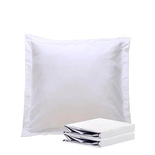 NTBAY Taies d'oreiller en Microfibre Oxford, Lot de 2 Taies d'oreiller Oxford Antirides et Antitaches Douces et Confortables, 65x65cm, Blanc