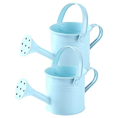 DOITOOL Regadera de metal para niños, 2 botes de riego de hierro para niños, hervidor de agua para jardín, plantas del hogar, flores (azul cielo)