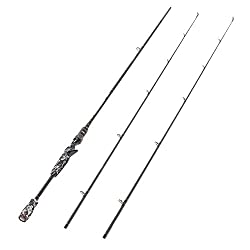 Top 10 Best Fishing Pole 2019 Reviews & Buying Guide