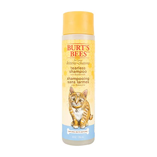 Burt's Bees for Kittens Natural Tearless Shampoo with Buttermilk | Cat Shampoo for All Cats and Kittens | Cruelty Free, Sulfate & Paraben Free, pH Balanced for Dogs - Made in USA, 10 Oz