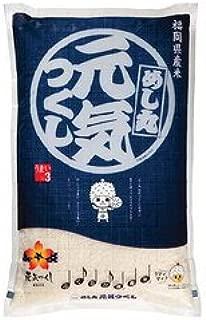 藤食糧 研ぐお米 福岡県産金のめし丸元気つくし 10kg(5kg×2袋)