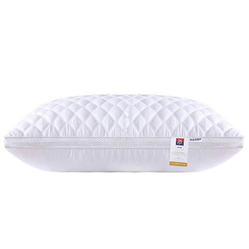 Nologo YY-JJ Best Sleeping Pillow Anti Dust Mite White Duck/Goose Down Feather Pillow Standard Antibacterial Elegant Home Textile Pillow Home Bedding,pillow (Size : Style one)