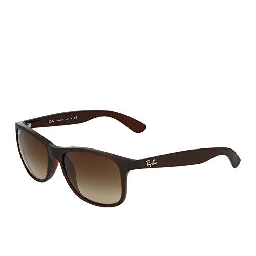 Rayban Andy Nylon Frame Brown Gradient Lens Unisex Sunglasses RB4202 607313 55-17