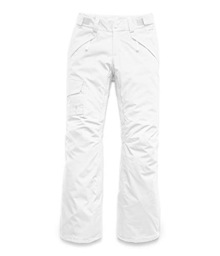 The North Face L Freedom Insulated PNT